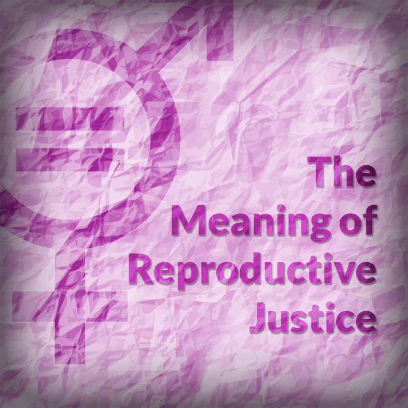 The Meaning of Reproductive Justice